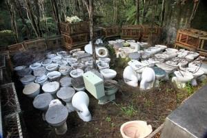 Toilets in the bush.