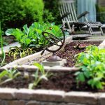 DIY Landscaping Projects for Spring